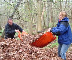 Leaf Shelter Building Survival