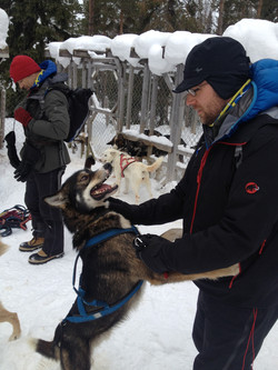 Dog sled arctic survival expedition