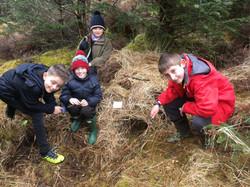 Shelter bushcraft school day out