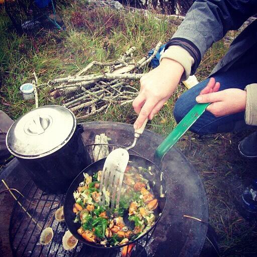 foraged food Scotland west coast day