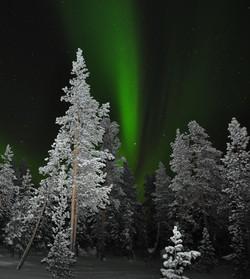 Arctic Survival Expedition