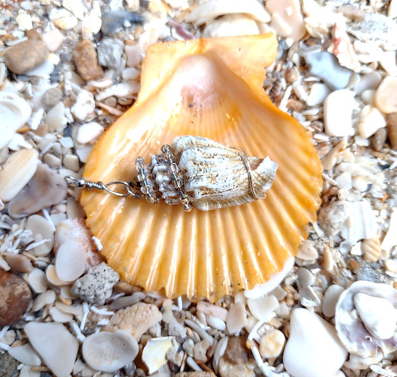 Handmade Wire Wrapped Natural Shell Necklace