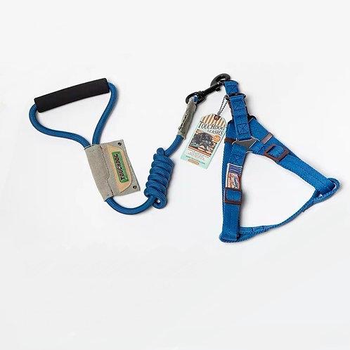 Harness & Leash Set - Blue