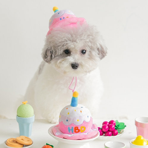 Party Hat/Toy