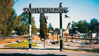 animal-kingdom-lottorps-camping.jpg