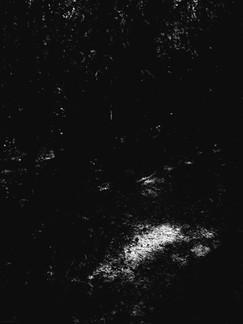 20210309_103528.jpg
