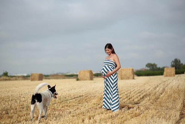 צילום היריון מיוחד