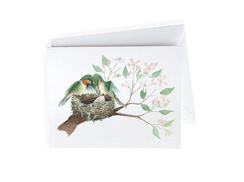Hummingbird Baby