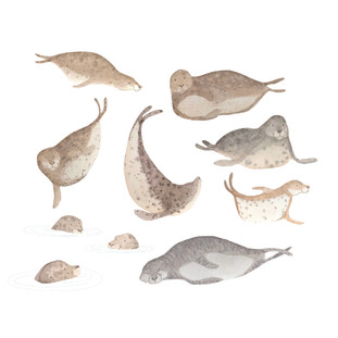 Slippery Seals