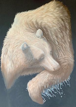 Spirit Bear_BF_Oct 30, 2020 (1)_edited.jpg