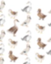 DDG Tile.jpg
