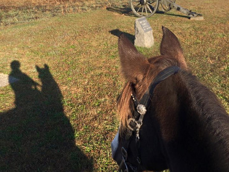 Battlefield of Gettysburg