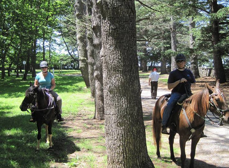Trail Review - Blandy Experimental Farm, Arboretum