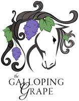 Used Western Horse Saddles | Warrenton VA | The Galloping Grape