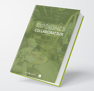 Experience-collaborateur.jpg