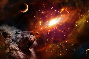 lion-4985567_1920_edited.jpg