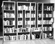 A LIFE OF LOVE - BOOKCASE