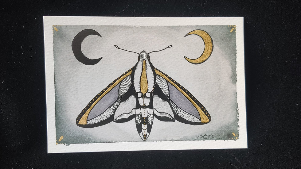 Moth and Moons 4x6