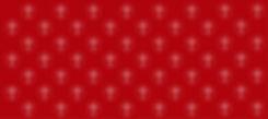 Cross + Shield Texture v2-01.jpg