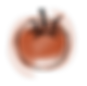 tomato-01.png