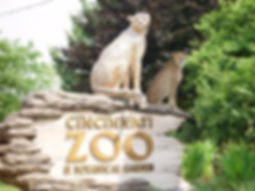 cincy-zoo-2.jpg