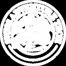 Logo_SAT_100x100_white.png