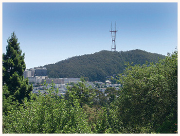 SUTRO_FROMGGPARKs