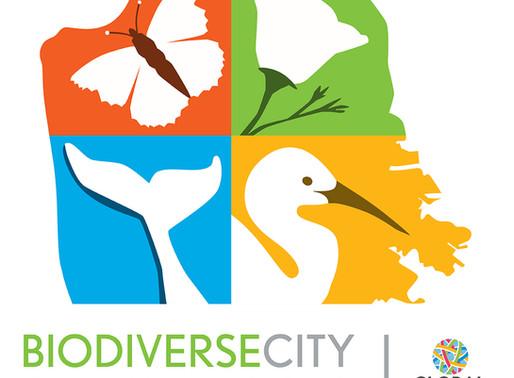 BiodiverseCity Summit