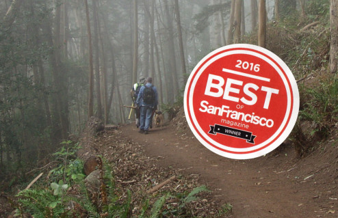 "San Francisco's ""Best City Hike"" is Mount Sutro"