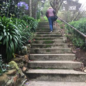 Hike Report: Bird Watching Route