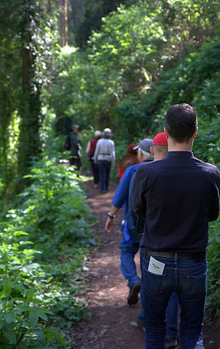 Mount Sutro Open Space Reserve - Hikers on Trail