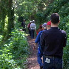 August Walks on Mount Sutro