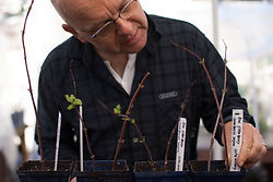 Volunteer at the Mount Sutro Native Plant Nursery in San Francsico with Sutro Stewards