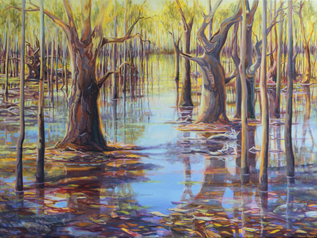 Creating the Barmah Series