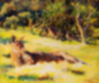 Kallista Kangaroos_sm.jpg
