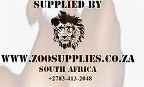 lion%25252520logo_edited_edited_edited_e