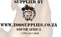 lion%252520logo_edited_edited_edited.jpg