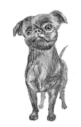 DogWebsite1.jpg