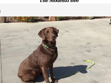 MD in the Modesto Bee!