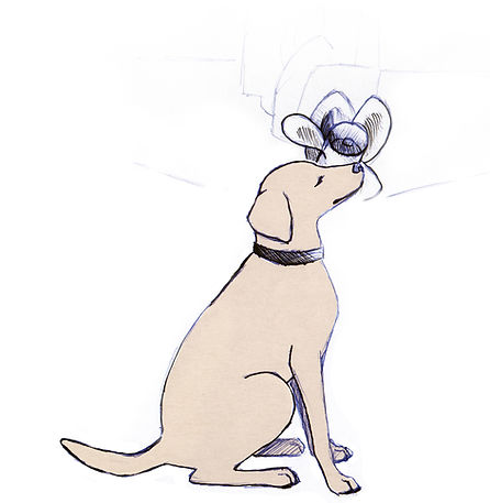 Mussel Dog illustration, dog sits when it finds zebra mussels