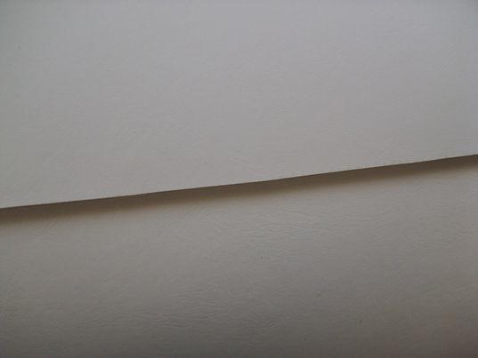 Formula white 1.jpg