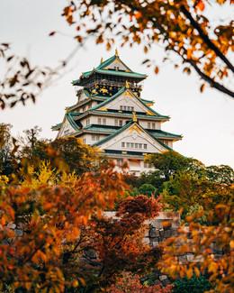 BertrandBERNAGER_Tokyo-0283.jpg