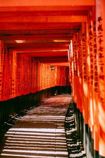 BertrandBERNAGER_Kyoto_Insta-.jpg