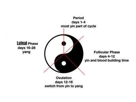 Understanding Kidney Yang Deficiency in the Luteal Phase