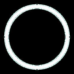 circulo branco.png