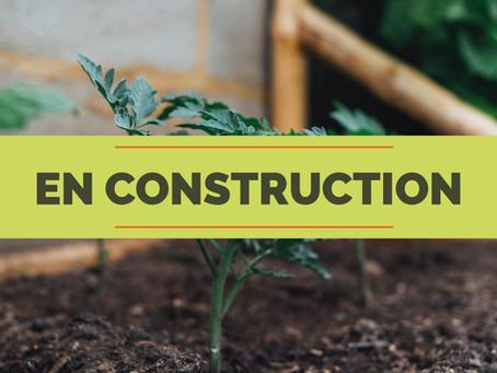 Jardiner en bacs - les différentes options
