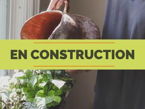 Balcon, terrasse ou jardin : créez le potager de vos rêves