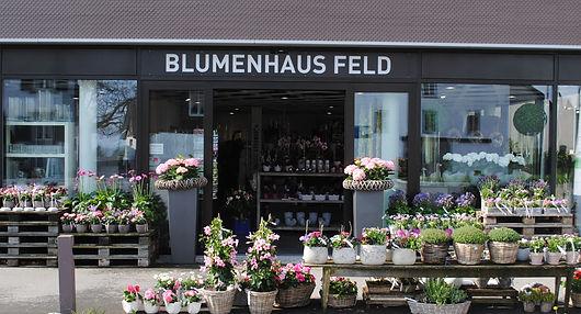 Blumenhaus Feld Front