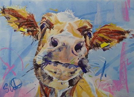 Cow (Blue) A-012-13.JPG