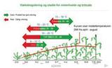 Bayer: Trimaxx er effektiv vækstregulering